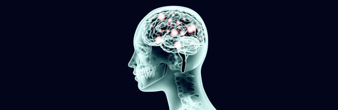 Os benefícios do exercício físico: O Nosso Cérebro