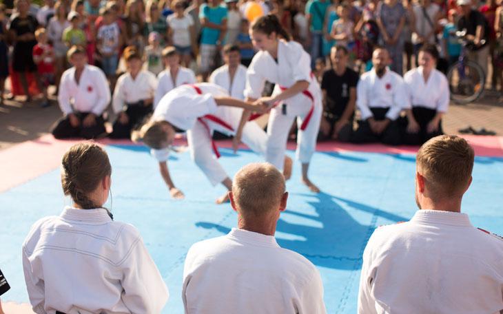 Lutas e artes marciais na escola: o ensino e as possibilidades pedagógicas