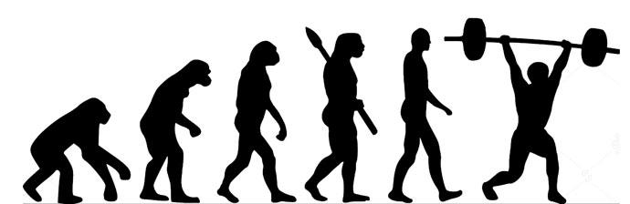 Evolução do Treinamento de Força