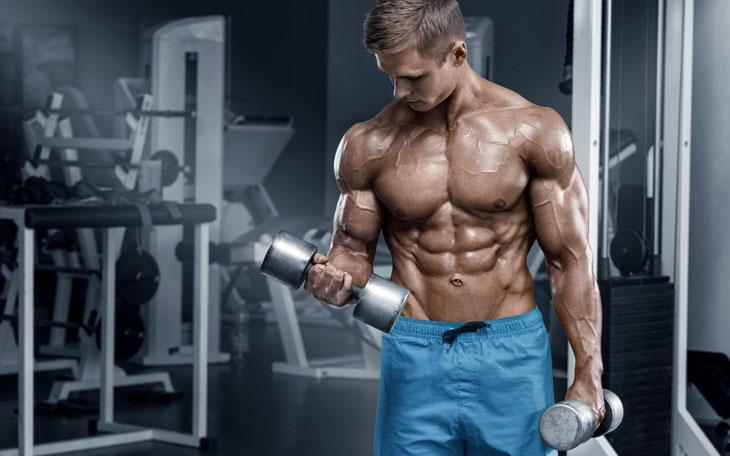 Saiba Tudo Sobre o Desenvolvimento da Força Muscular
