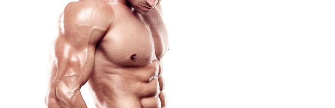 definicao-muscular-2