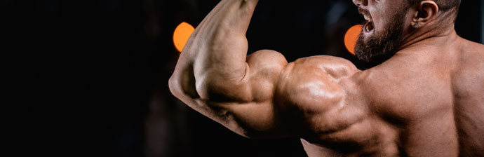 definicao-muscular-3
