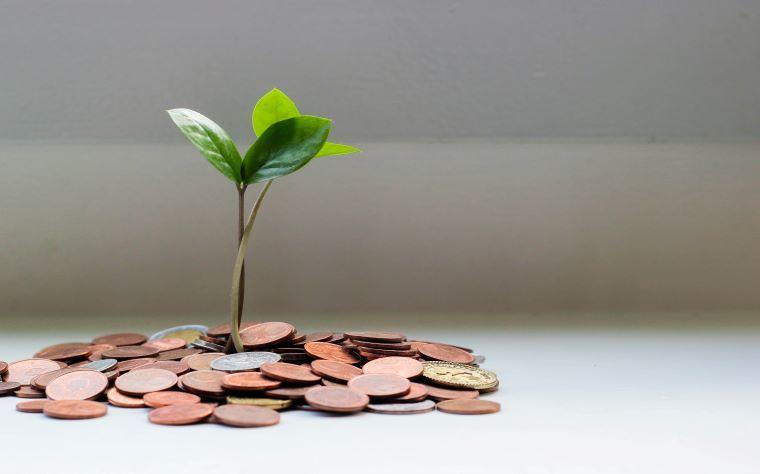 Por que o profissional da saúde não tem liberdade e satisfação financeira?