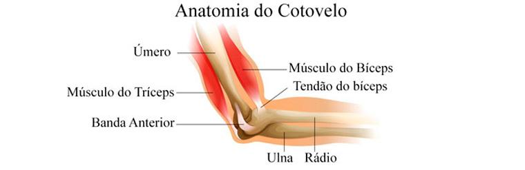 01 - Por que a má postura e o encurtamento muscular geram lesões